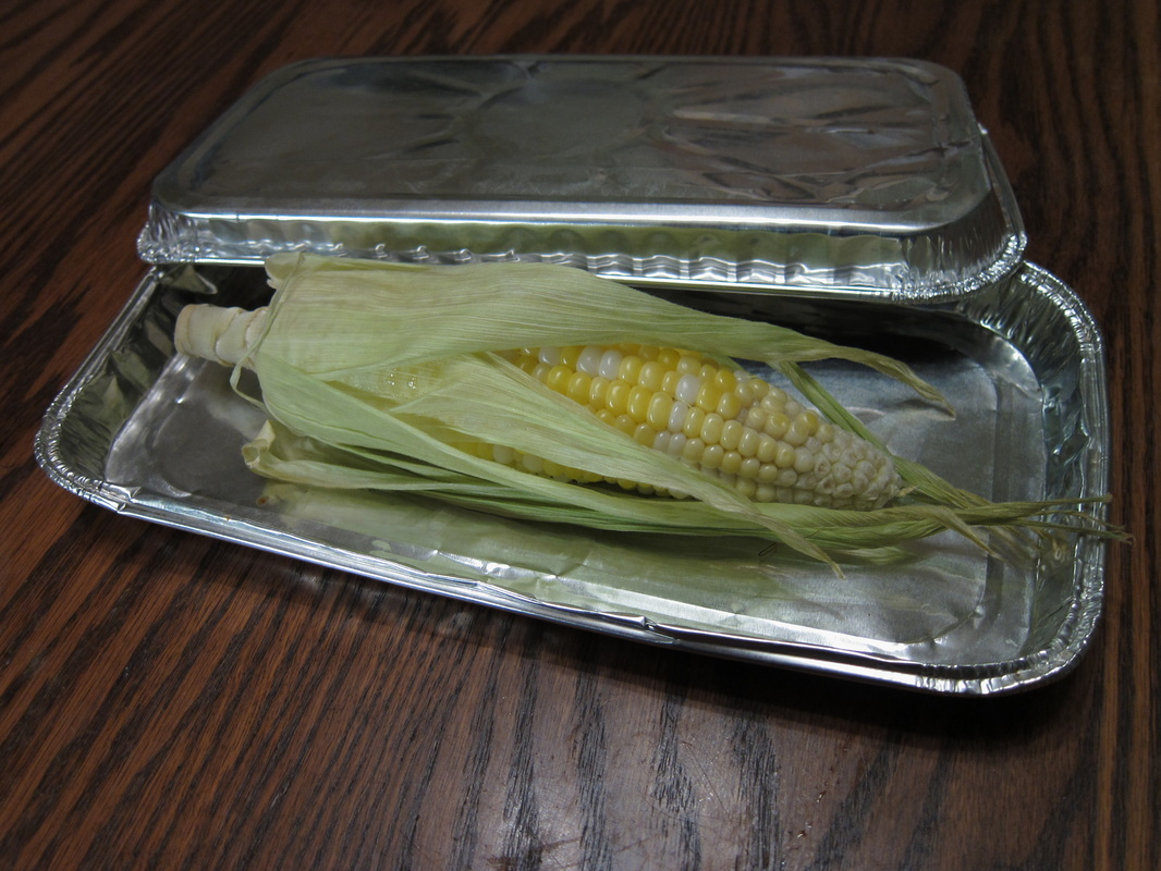 Baked or broiled corn on the cob sandwiched between tinfoil trays